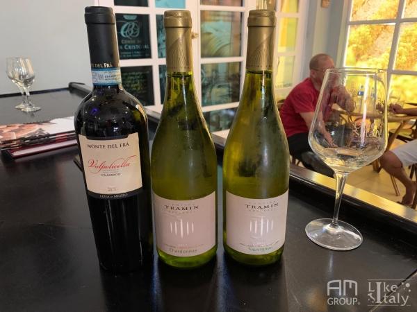 temporada-vinos1830_001